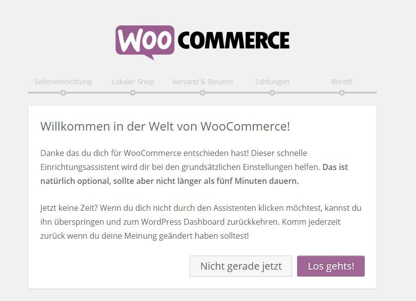 Onlineshop für WordPress mit WooCommerce