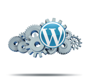 WordPress Weiterleitung einrichten mit Redirection Plugin